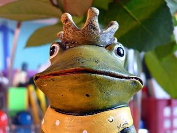 Froschkönig © Martina Hildebrand 2013